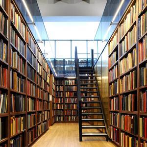 Библиотеки Партизанского