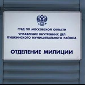 Отделения полиции Партизанского