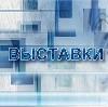 Выставки в Партизанском