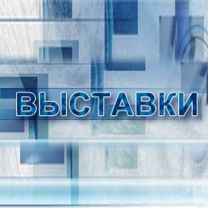 Выставки Партизанского